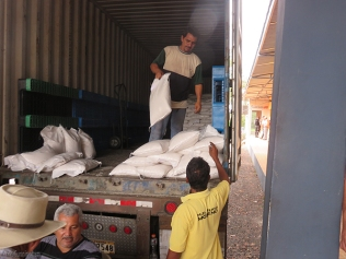 Bags of rice are unloaded from the truck to the waiting customers below.