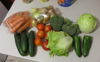 Veggies are cheap and delicious in Cerro Punta. I think this bag full was $5.70.