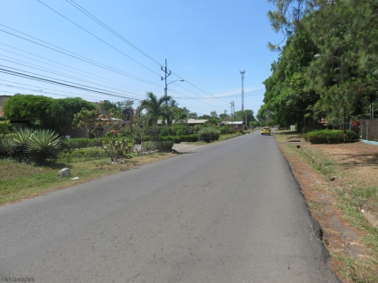 This is the street, and the driveway on the left by the palm trees is the driveway to the house. The south end of the school property is on the right, and beyond that is a single family home with a great retired couple who love to garden and have tons of plants and trees.