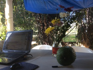 "My usual view at my outside ""office"". The flowers are a gift from one of my neighbors, and the big green thing is a guanabana (soursap) that Joel managed to get before it fell."