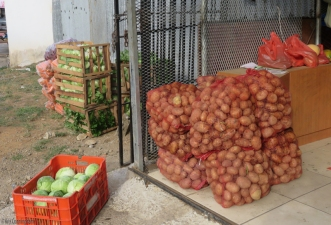 Fresh potatoes, cabbage, carrots, celery, lettuce, and crates of many other things were unloaded from the trucks.