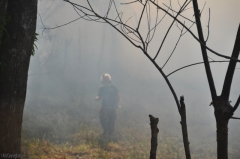 A fireman is seen through the blur of smoke from a brush fire