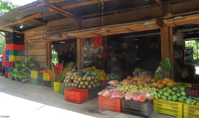 This is the front of the market. You can see avocados, passion fruit, papayas, parsley, bananas, pineapples, a bucket of flowers, oranges, and plantains.