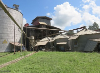 We were told that rice was also being dried in these buildings which were just past where we had stopped.