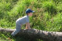 Climbing over logs near the stream is always fun.