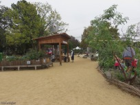 There is a vegetable garden on the left and place where kids can sort vegetables.