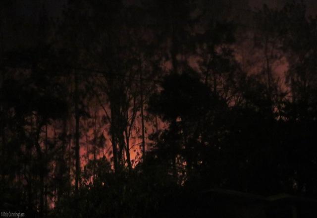 116fire2