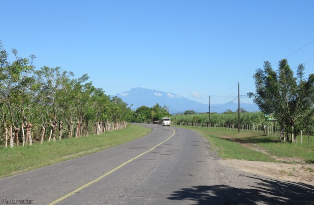 A bit more countryside on the way to La Barqueta beach - living fences, sugar cane fields, and Volcan Baru in the distance
