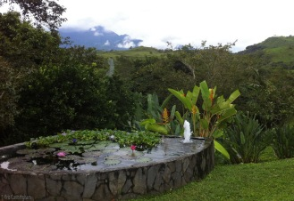 Another water lily pond, and wonderful views of the mountains behind