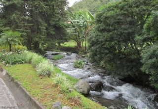 A pretty river runs through the area