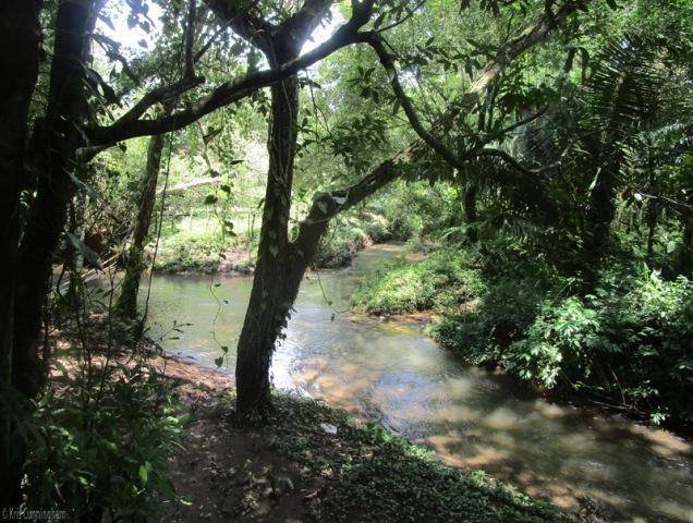 A pretty little river