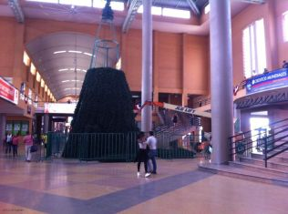 They were putting up the Christmas tree in the Albrook bus station.