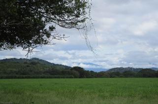 I love the scenery