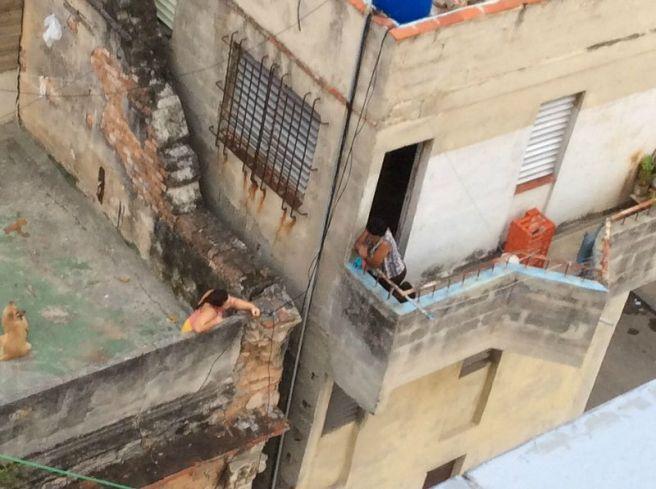neighbors talk between their balconies