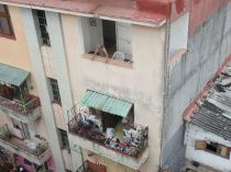 hanging out on balconies. The guy on the upper one was having a conversation with someone across the street.