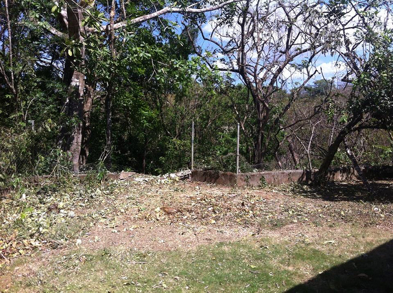 The tree took out the fence, a couple posts, and part of the supporting wall.