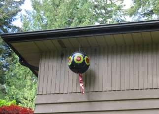 They have had a lot of trouble with a woodpecker who insists on pecking holes in their house and making a nest in there. This balloon however seems to be doing the trick and there have been no woodpeckers this year. We saw them on a few other houses so this must be a common problem in the area.
