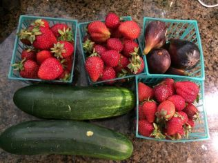 From the farmers market - the strawberries were wonderful, but still, this all cost $20.