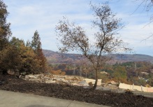 A home in a very upscale neighborhood. Notice how the hills in the background are entirely burned.