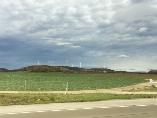 more vineyards, and some of the many windmills we saw
